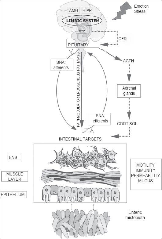 AnnGastroenterol-28-203-g001