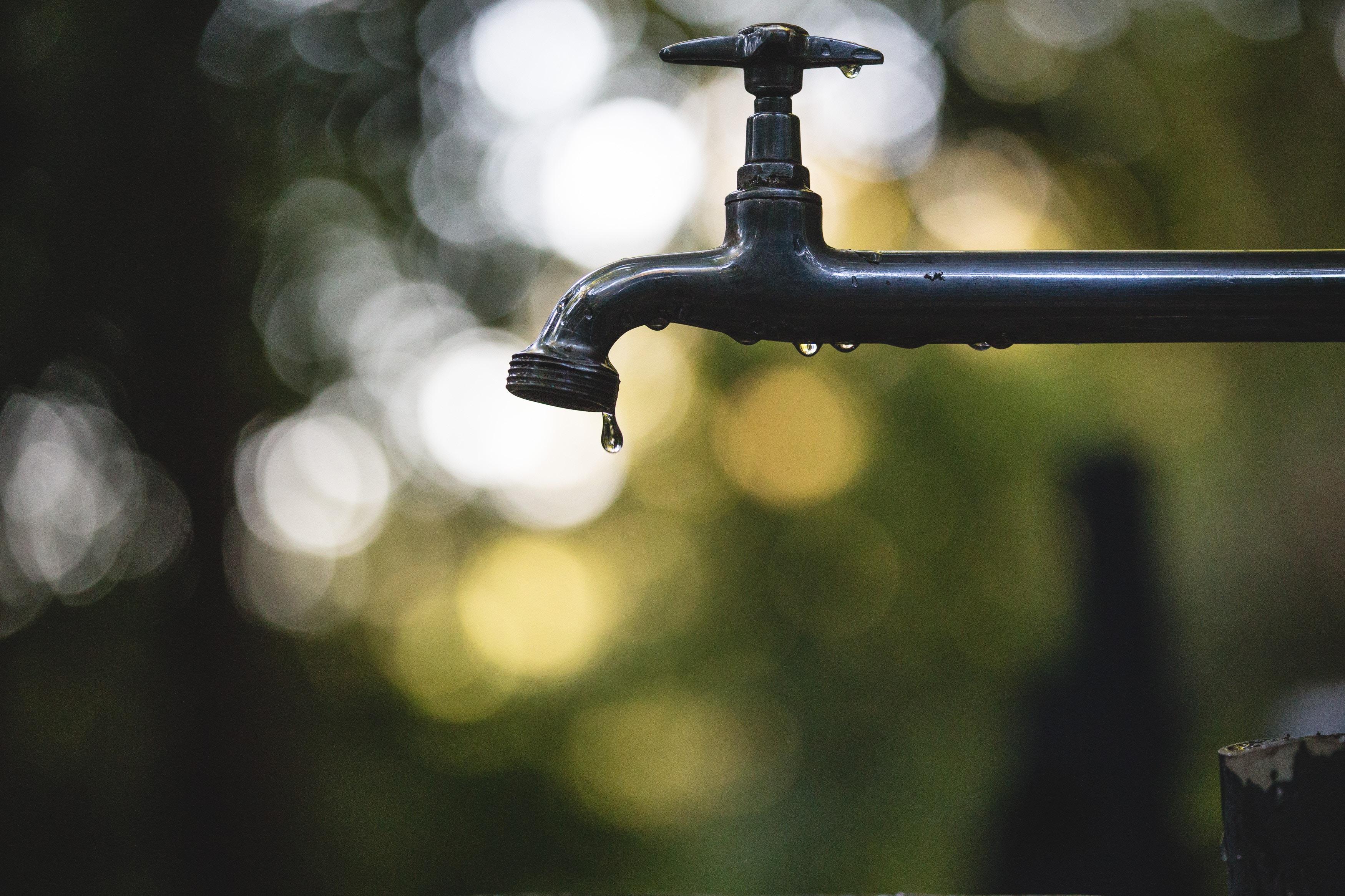 leaky pipe not leaky gut