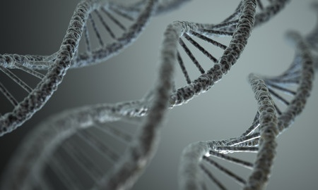 Why Your MTHFR Gene Mutation Treatment is Not Working