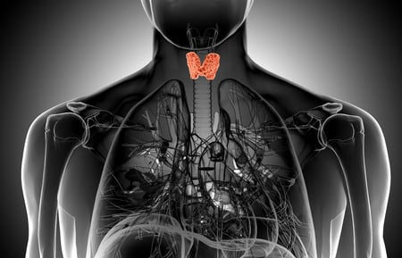Natural Treatment for Thyroid