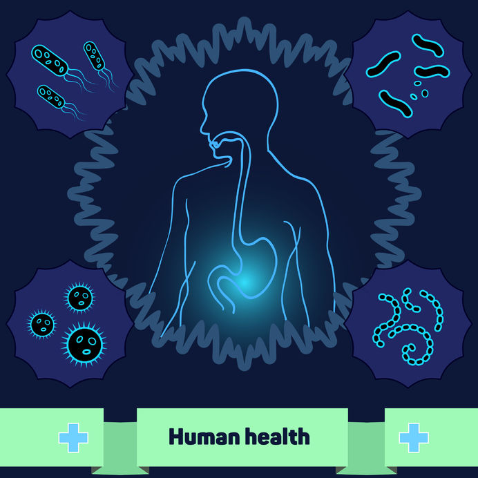 Digestive Health Specialists on Supporting Your Microbiome